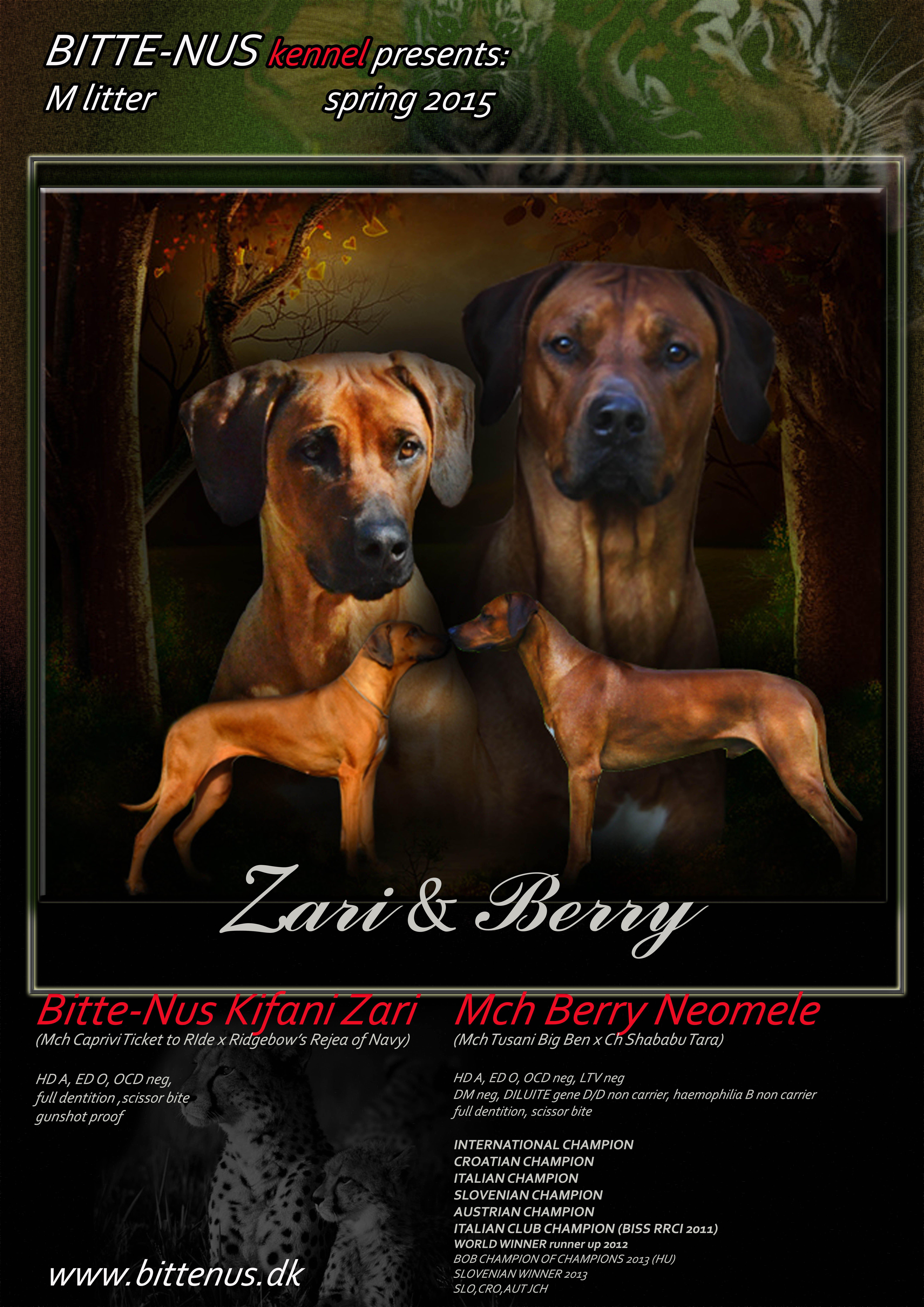 zari-berry_0